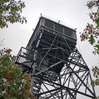 Dorset Scenic Lookout Tower
