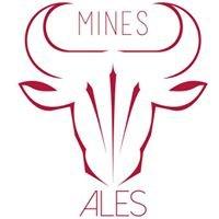 BDS Mines Alès