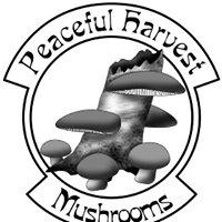 Peaceful Harvest Mushrooms