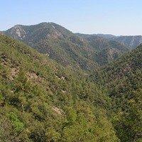 Troodos-Gebirge