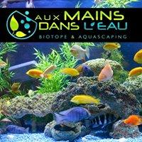 Aux Mains Dans L'eau, Entretien, Installation, Création d'aquariums.