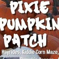 Whiteman Air Force Base Pixie Pumpkin Patch