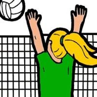 Bishop Feehan Shamrocks Volleyball