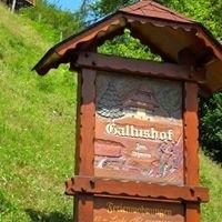 Gallushof - Urlaub auf dem Bauernhof