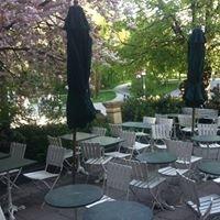 Café Königin 43