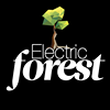 Electric Forest WU