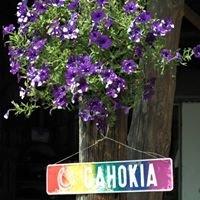 Cahokia e.V. - Der etwas andere Reitverein