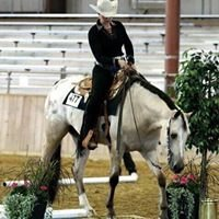 Proulx Show Horses, Inc