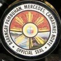 Pambuhan Mercedes Camarines Norte