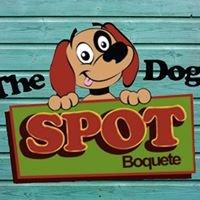 The Dog Spot Boquete