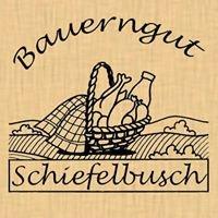 Bauerngut Schiefelbusch