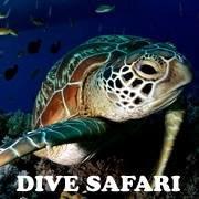 Philippine Dive Safaris