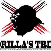 Gorilla's Tribe Studio