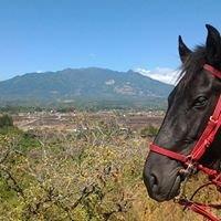 """Boquete Horseback Riding """"Eco Tour"""""""