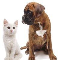Annette's Pfötchenshop & Hundefrisör