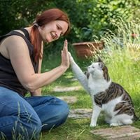 TheraFelis - Katzenberatung & Catsitting, Katja Rüssel