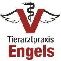 Tierarztpraxis Engels