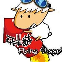飛羊遊~紐西蘭精緻小團旅遊