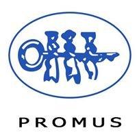 Asociación Promoción de la Mujer del Sur,PROMUS