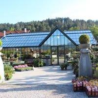 Gärtnerei Hebenstreit