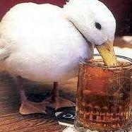 PubSwan Swan