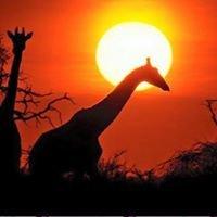 Unzwa Safaris