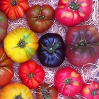 Wegener's Gemüsemanufaktur