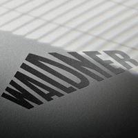 Waldner Karriere