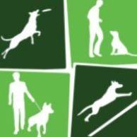 Dogrockers