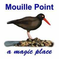 Mouille Point Promenade