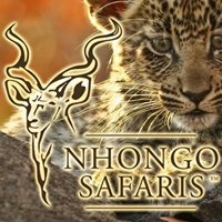Safaris Into Kruger