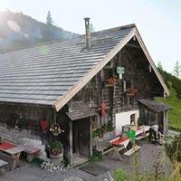 Loseggalm-Langfeldhütte