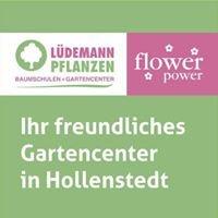 Lüdemann Pflanzen GmbH