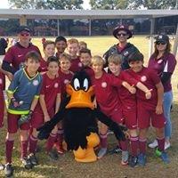 Coomera Soccer Club