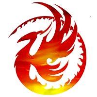 Phoenix Martial arts & Fitness