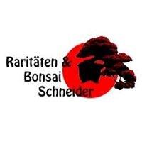 Bonsai-Schule Schneider - Bonsai und Gehölzraritäten aus Odenthal-Scheuren