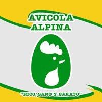 Avicola Alpina