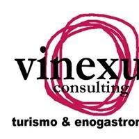 Vinexus Consulting