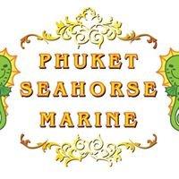 Phuket Seahorse  Marine
