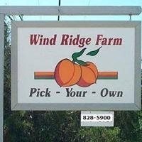 Wind Ridge Farm