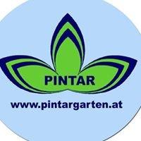 Pintar Gartengestaltung