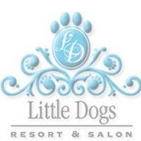 Little Dogs Resort & Salon