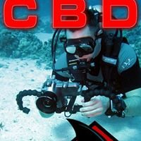 Cold Blood Divers - For those who live to dive