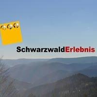 Schwarzwald Erlebnis