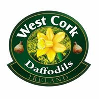 West Cork Daffodils