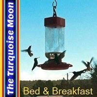 The Turquoise Moon Bed & Breakfast