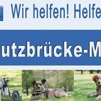 Tierschutzbruecke-Muenchen e.V.