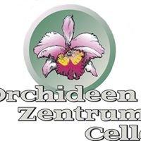 Orchideen Zentrum Celle