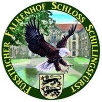 Fürstlicher Falkenhof Schloß Schillingsfürst