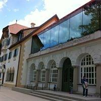 Alpsee/Museum der Bayerischen Könige